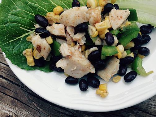 Chicken Corn Salsa sm